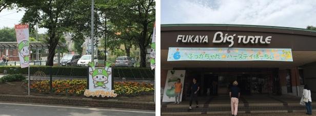 0702fukaya02.jpg
